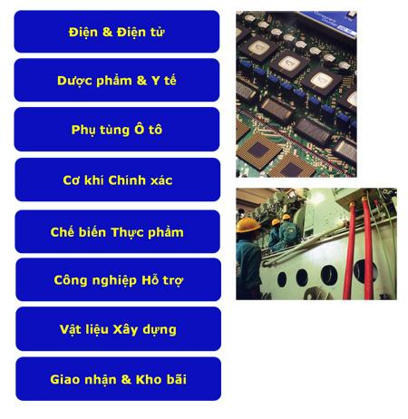 Khu công nghiệp Việt Nam - Singapore VSIP Bình Dương (27)