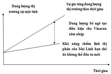Đấu đầu Vinasun, chiến lược nào để taxi Mai Linh giữ lại ngôi vương? (3)