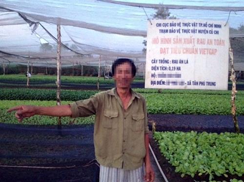 Rau bẩn từ vườn đến bàn ăn: Không dám ăn rau mình trồng (1)