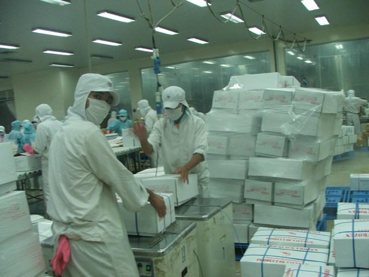 Nhà nhập khẩu tăng mua cá tra Việt Nam để dự trữ (1)