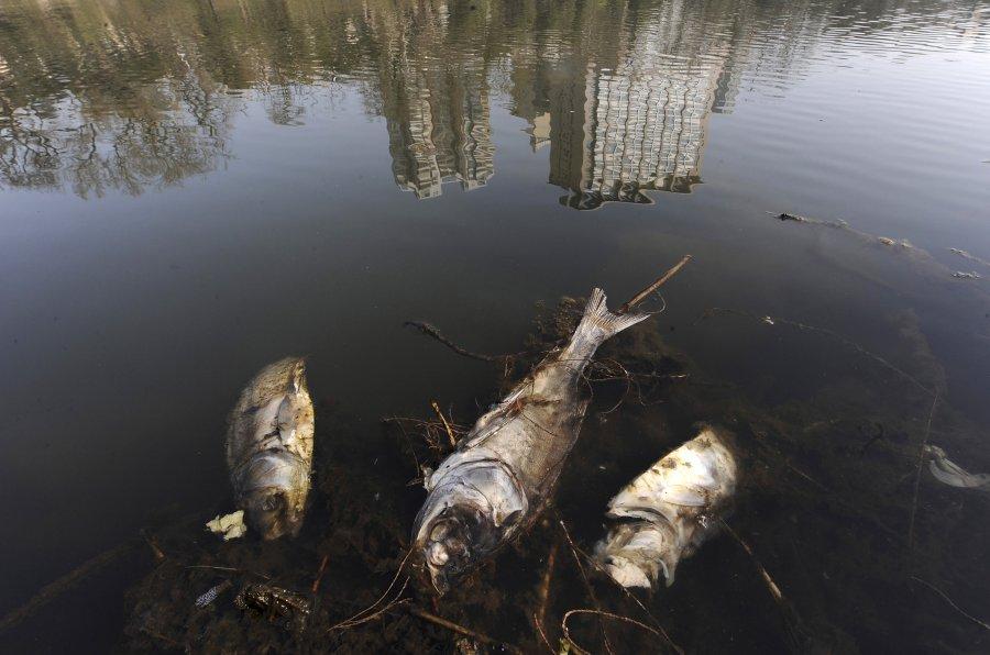 Hình ảnh đáng sợ về những nguồn nước 'chết' ở Trung Quốc (12)