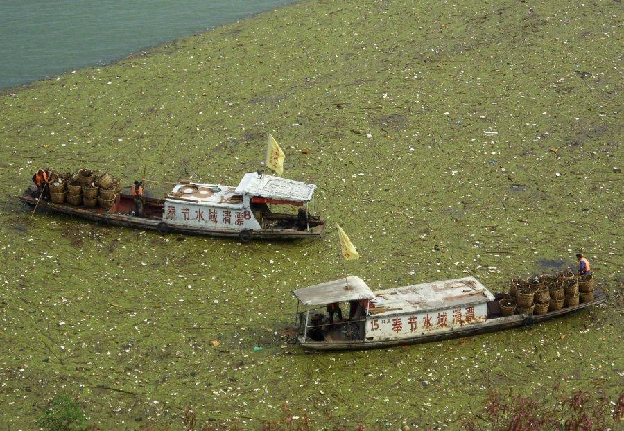 Hình ảnh đáng sợ về những nguồn nước 'chết' ở Trung Quốc (16)