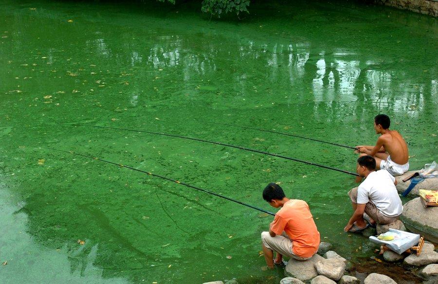 Hình ảnh đáng sợ về những nguồn nước 'chết' ở Trung Quốc (18)