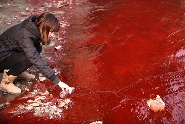 Hình ảnh đáng sợ về những nguồn nước chết ở Trung Quốc