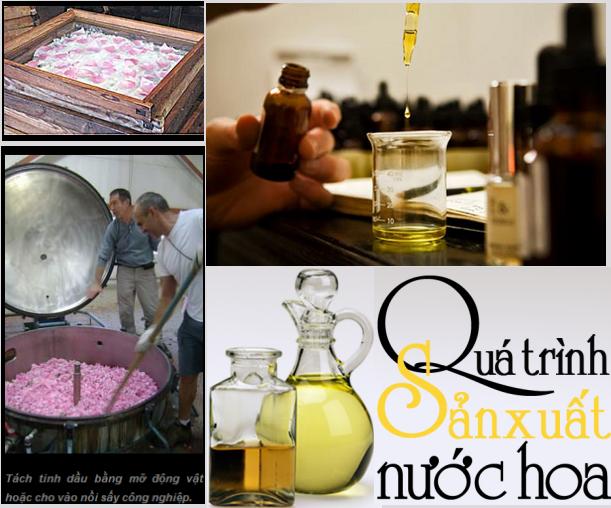 Hương gỗ, vỏ quế, tinh dầu hoa... đã biến hóa vào chai nước hoa như thế nào? (2)