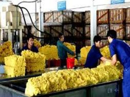 BVSC: LNST 2012 của DPR ước đạt 491 tỷ đồng
