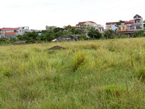 Những dự án BĐS chỉ để cỏ mọc (8)