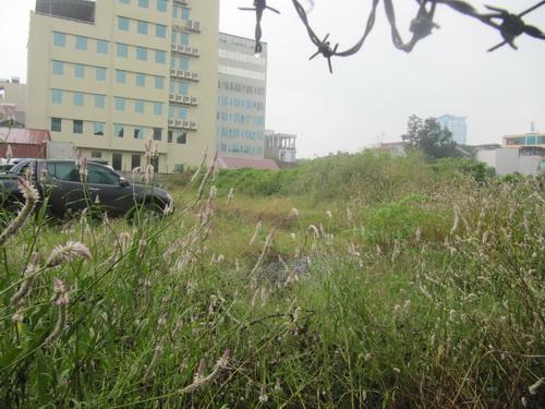 Những dự án BĐS chỉ để cỏ mọc (4)