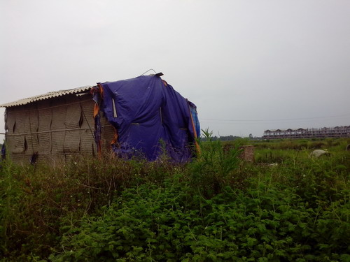 Xót xa với cảnh hoang tàn một số dự án đô thị mới Mê Linh (3)