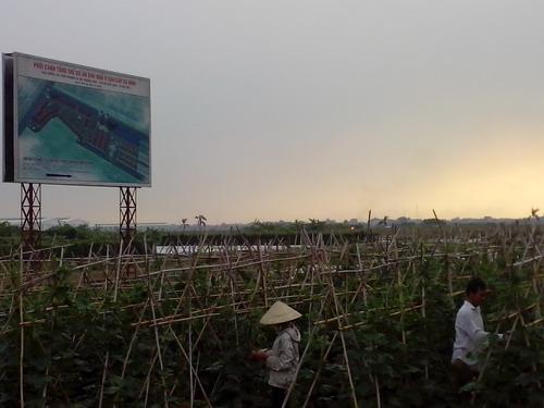 Xót xa với cảnh hoang tàn một số dự án đô thị mới Mê Linh (7)
