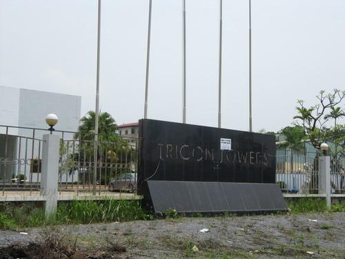Đắng lòng nhìn cảnh hoang tàn tại dự án Tricon Towers (1)