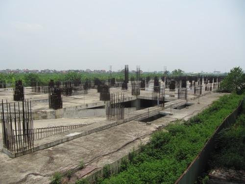 Đắng lòng nhìn cảnh hoang tàn tại dự án Tricon Towers (8)
