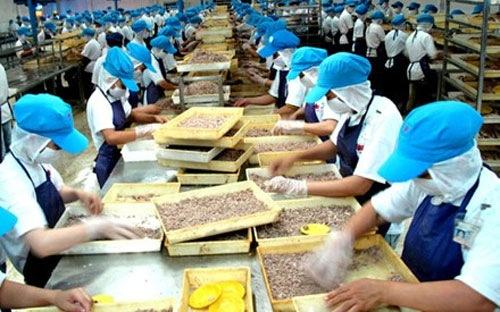 Năm 2011 năng suất lao động của Việt Nam đã tăng và đạt gần 2.400 USD/năm. Nhưng theo Tổng cục Thống kê, năng suất này vẫn còn thấp xa so với với Philippines, Indonesia, Thái Lan, Malaysia, Singapor - Ảnh minh họa.