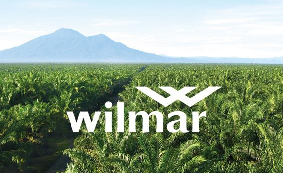 Chuỗi sản phẩm về cọ là nguồn lợi nhuận chính của Wilmar