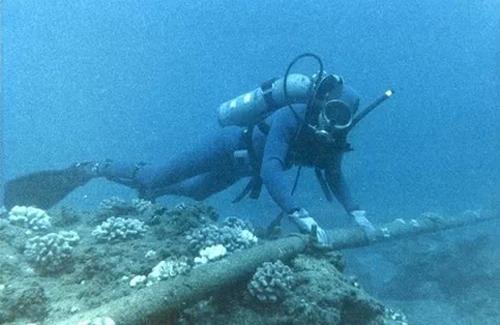 Vì sao cáp quang biển của Việt Nam liên tục bị đứt?