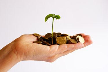 Lập doanh nghiệp mới: Xu hướng né ngành tài chính, bất động sản