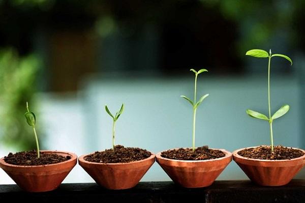Mọi thành công lớn bắt đầu tư bước đi nhỏ