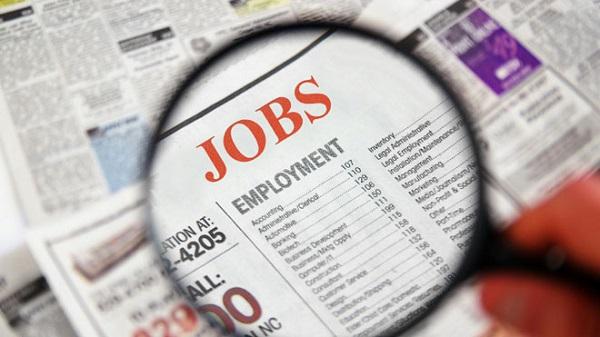 Người Việt đang muốn gì khi đi tìm việc?