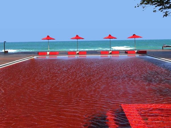 Một resort Việt Nam sở hữu 1 trong 25 bể bơi tráng lệ nhất thế giới (14)