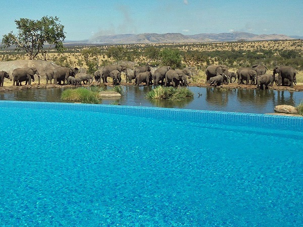 Một resort Việt Nam sở hữu 1 trong 25 bể bơi tráng lệ nhất thế giới (15)