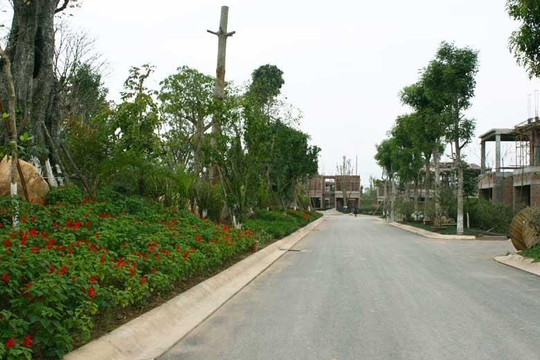 Khu đô thị sinh thái Ecopark (24)