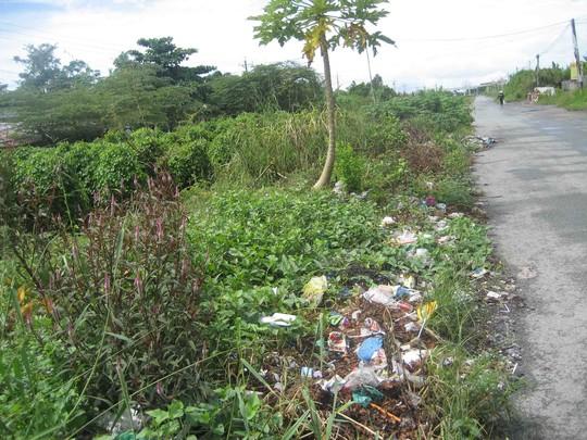 Cỏ dại, rác tràn ngập dọc lối đi