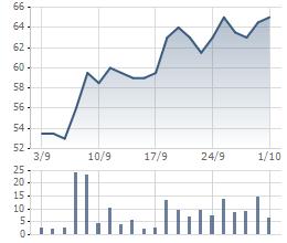 Cổ phiếu DQC tăng mạnh trong giai đoạn Điện Quang đăng ký mua