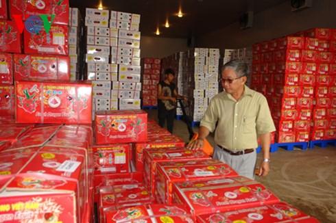 Bình Thuận sẽ mở rộng thị trường xuất khẩu thanh long qua châu Âu và nhiều nước khác.