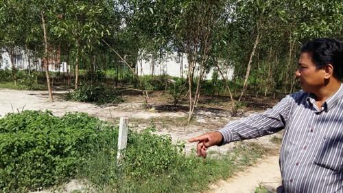 Cò đất Nam đang giới thiệu mảnh đất thổ cư có giá 35 triệu đồng/m ngang.