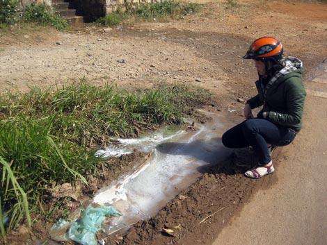 Nông dân nuôi bò sữa ở Lâm Đồng bức xúc đổ sữa ra đường.