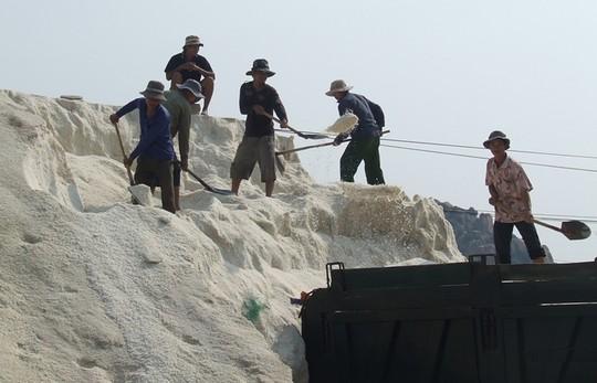 Lượng muối tồn kho ở Ninh Thuận hiện lên tới trên 100.000 tấn.