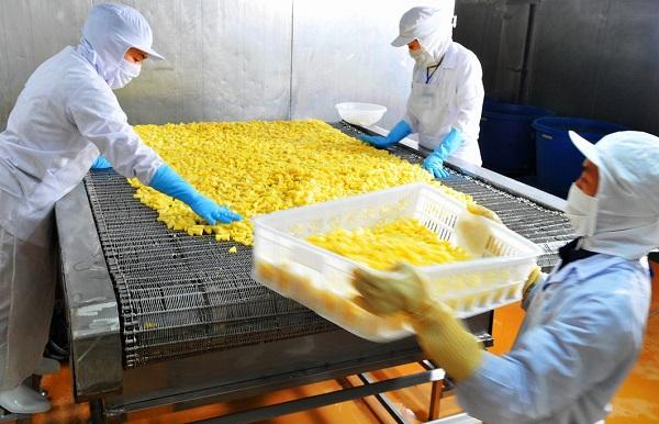 Công nhân làm việc tại dây chuyển cấp đông (IQF). West Food sẽ đưa vào vận hành thêm một dây chuyền IQF nữa vào tháng 7.