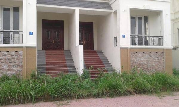 ... vào tận cửa chính của tòa nhà