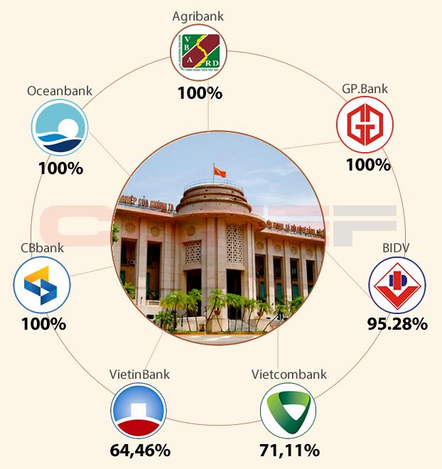 Sở hữu của NHNN tại các ngân hàng hiện nay (Đồ họa: Hương Xuân)
