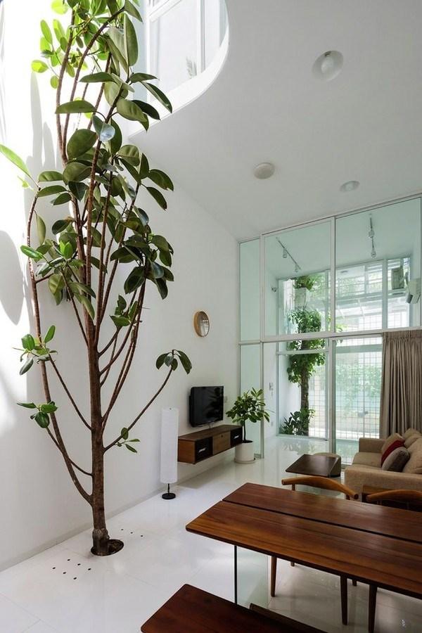 Điểm nhấn chủ yếu của ngôi nhà là cây xanh và ánh sáng tự nhiên.