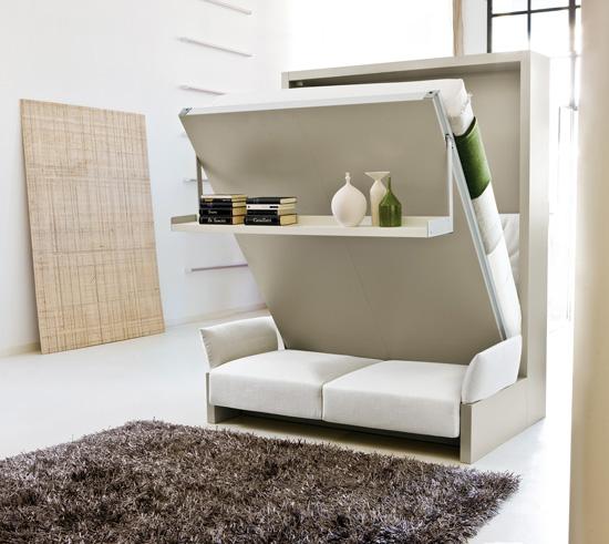 Một thiết kế đa năng tích hợp chiếc giường ngủ với khu vực tiếp khách bao gồm ghế sofa và kệ trang trí đẹp mắt.
