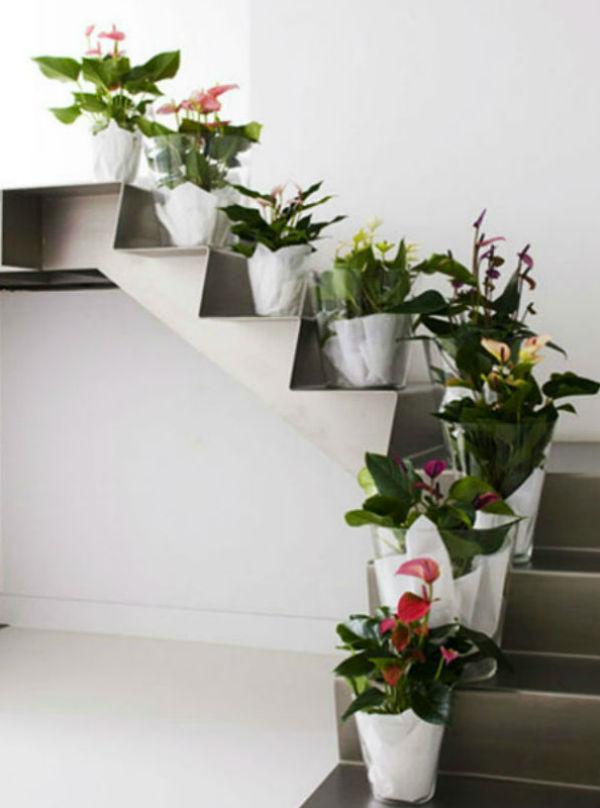 Cầu thang nhà bạn sẽ đẹp hơn nhiều với những chậu hoa xinh xắn.