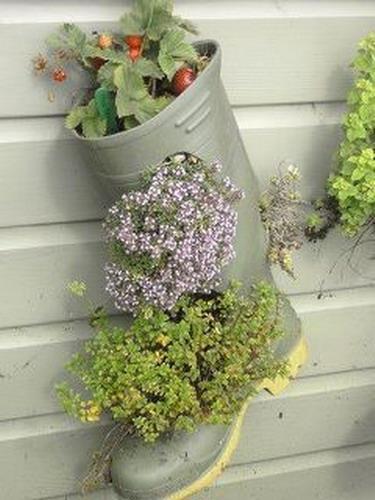 Những đôi ủng, đôi boot đi mùa đông đã không còn được bạn trưng dụng nữa cũng có thể là nguồn cảm hứng giúp bạn tạo nên những chậu hoa xinh xắn làm đẹp tổ ấm.