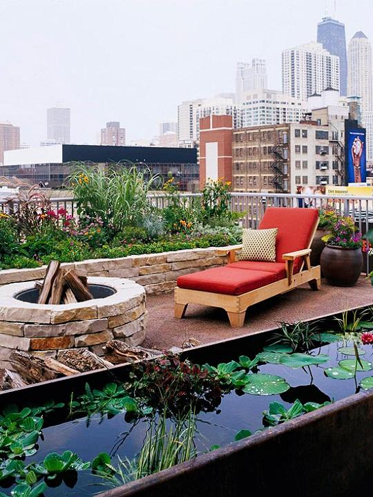 Bạn cũng có thể mang cả vườn hoa, ao cá lên sân thượng nhà mình.