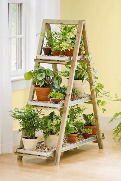 Với chiếc giá dạng thang gỗ, bạn có thể xếp được rất nhiều chậu cây khác nhau.