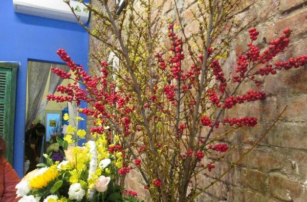 Đào đông và mai Mỹ nhập khẩu là hai loại hoa được chọn mua nhiều vào dịp Tết