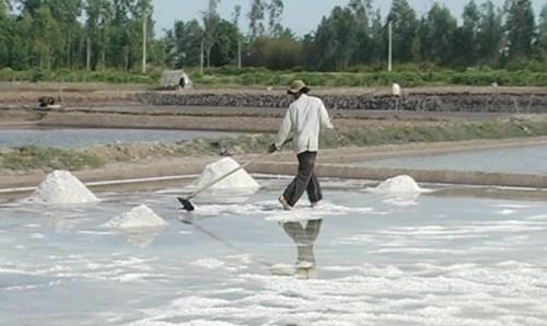 Ông Dương Văn Tràng, ấp Cồn Cù, xã Dân Thành, Duyên Hải (Trà Vinh) chuyển một số diện tích ruộng muối sang nuôi tôm sú.Ảnh: Diệu Hiền.