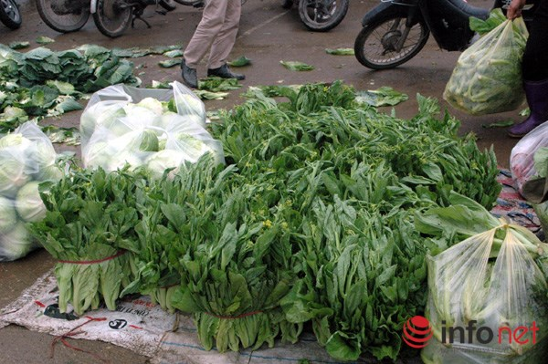 Rau bán tại chợ Vân Trì trông rất bắt mắt.