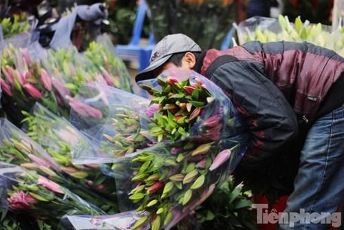 Dù giá hoa ly những ngày này đã cao hơn thời điểm cách đây 3 tuần, nhưng nhiều hộ dân trồng ly tại Tây Tựu vẫn chưa thể gỡ lại số vốn đã bỏ ra ban đầu.