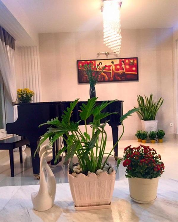 Với màu sắc chủ đạo là trắng, cách đan xen những điểm nhấn bằng cách chậu cây như vậy khiến ngôi nhà trở nên trang nhã, ấm cúng, tạo cảm giác gần gũi.