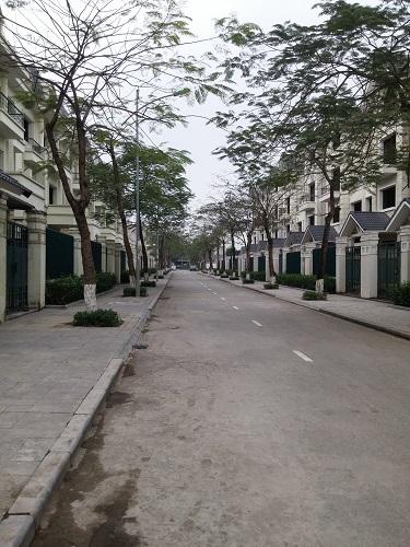 Khu biệt thự và hạ tầng nằm trong khu đô thị đã được hoàn thiện