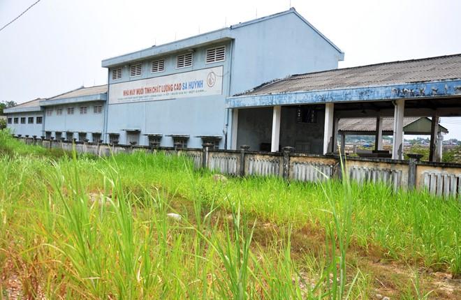Nhà máy muối tinh chất lượng cao Sa Huỳnh bỏ hoang cỏ dại mọc đầy. Ảnh: Minh Hoàng.