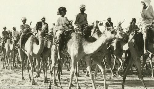 Cách đây 60 năm, phương tiện di chuyển của người dân chủ yếu là lạc đà.