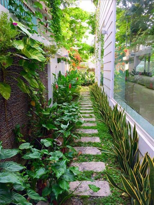 Lối đi ngập sắc xanh trong khu vườn nhà Quyền Linh.