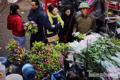 Ngoài ra, trong gần một tháng qua, không khí lạnh liên tục tràn về đã giúp hạn chế phần nào số lượng hoa ly nở sớm. Người nông dân nhờ đó lại có thể tấp nập cắt hoa mang ra chợ bán Tết, gỡ gạc được phần nào vốn liếng sau đợt phải bán tháo hoa với giá rẻ như cho.